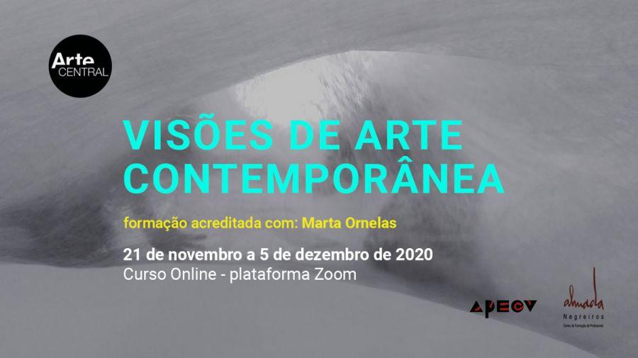 VISÕES DE ARTE CONTEMPORÂNEA