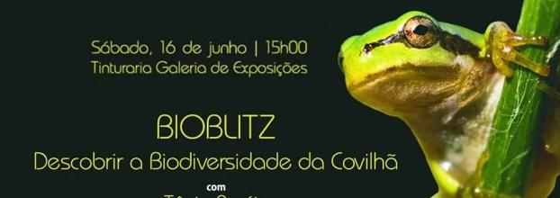 Bioblitz - Descobrir a Biodiversidade da Covilhã