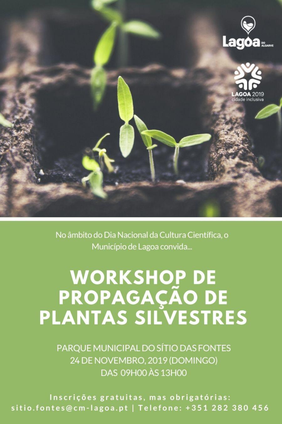 WORKSHOP DE PROPAGAÇÃO DE PLANTAS SILVESTRES (4h)