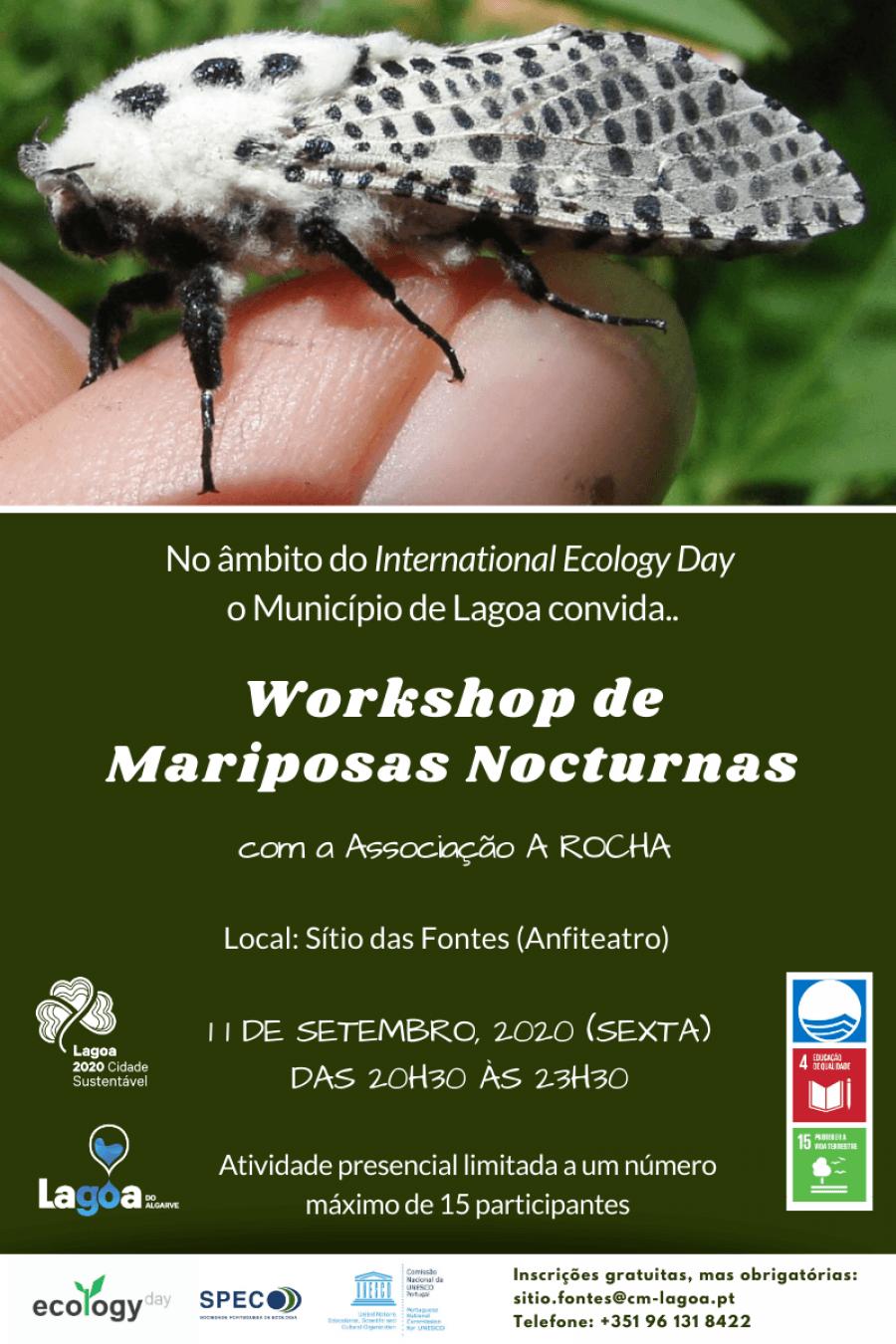 WORKSHOP DE MARIPOSAS NOCTURNAS - Formação de Iniciação à Identificação de Borboletas Nocturnas