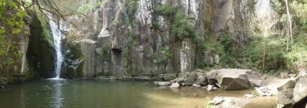 Voluntariado Ecológico - 3ª Limpeza do Rio Mourão