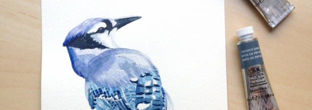 Pássaros em Aguarela