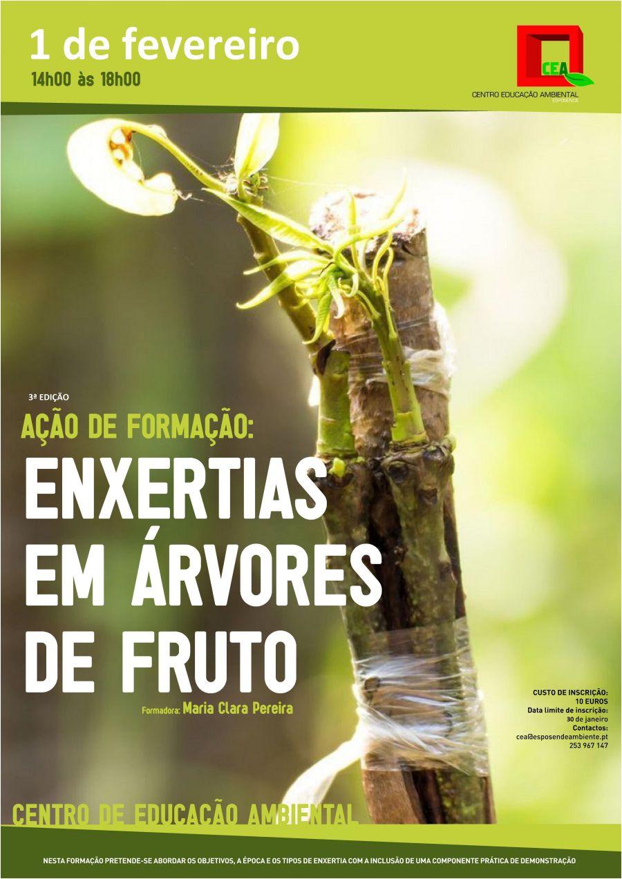 3ª EDIÇÃO | ÚLTIMAS VAGAS | Ação de Formação: Enxertias em Árvores de Fruto