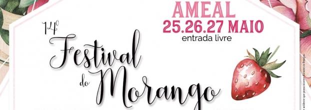 14º Festival do Morango 2018   Ameal   Torres Vedras