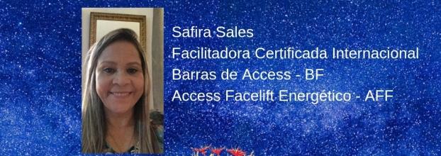 Barras de Access e Access Facelift Energético