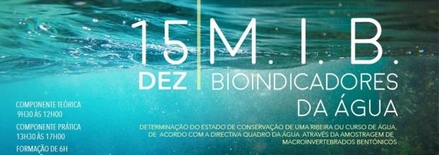"""""""M.I.B. - BIOINDICADORES DA ÁGUA"""" - Atividade de Formação de 6H"""