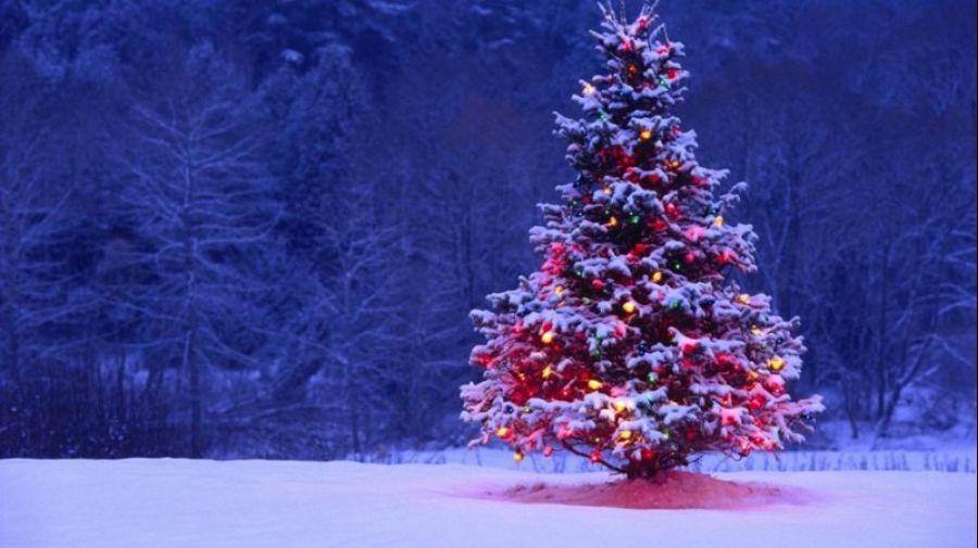 CONFERÊNCIA O Simbolismo do Natal e o Solstício de Inverno