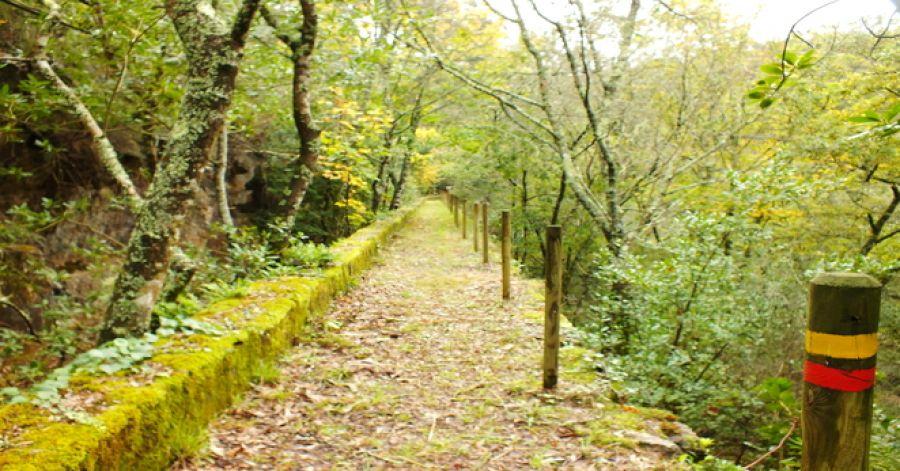 Percurso e Tai Chi Margens do rio Coura