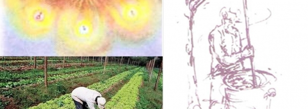 Curso de Agricultura Biodinâmica