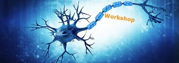 Workshop Neurociências e Neuroplasticidade