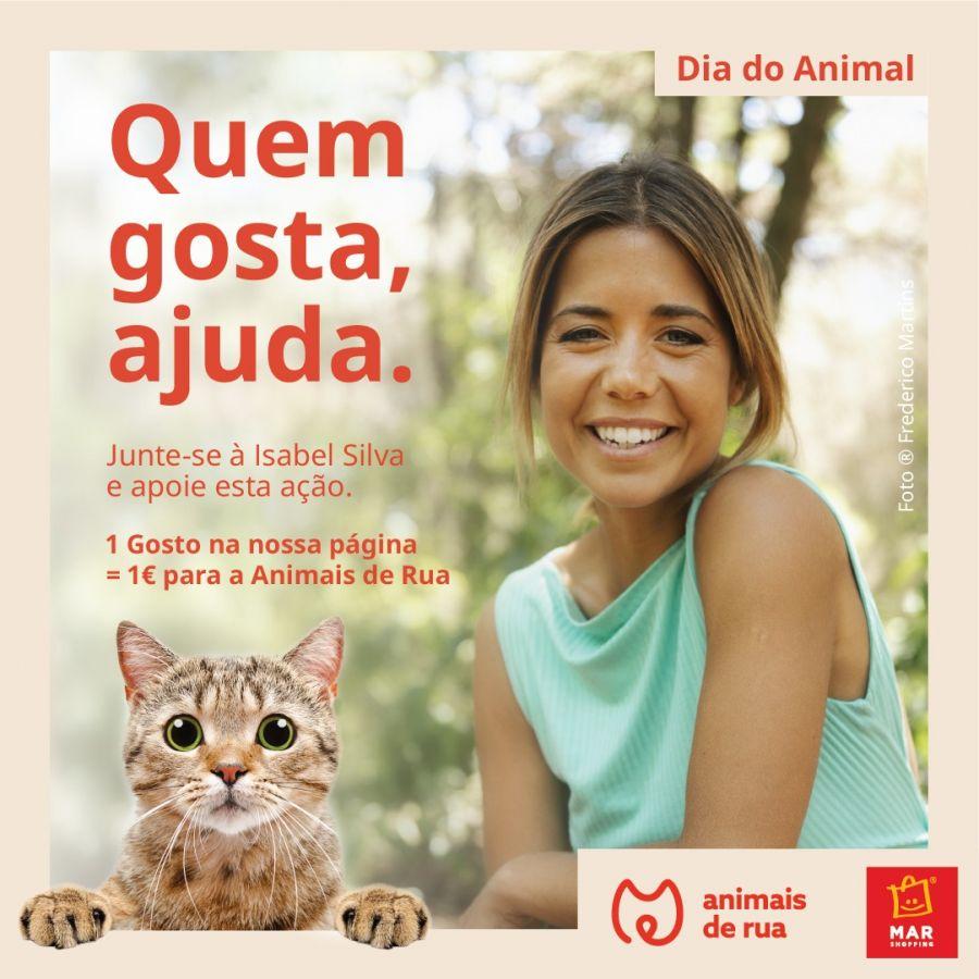 Apresentadores Isabel Silva e Hélder Reis apadrinham angariação de donativos para esterilizar duas colónias de gatos no Porto
