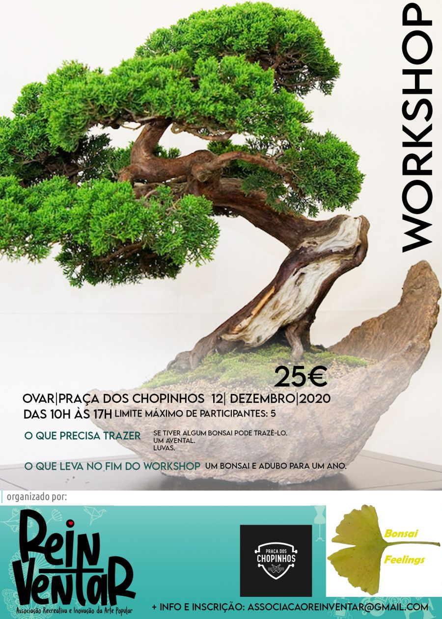 Workshop de Iniciação à Arte do Bonsai