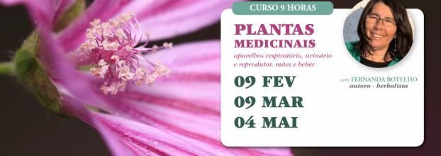 Curso de Plantas Medicinais com Fernanda Botelho