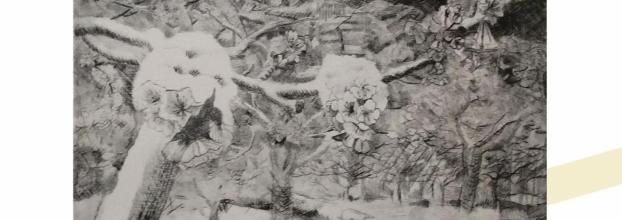 Exposición: 'Naturaleza: arte y vida'