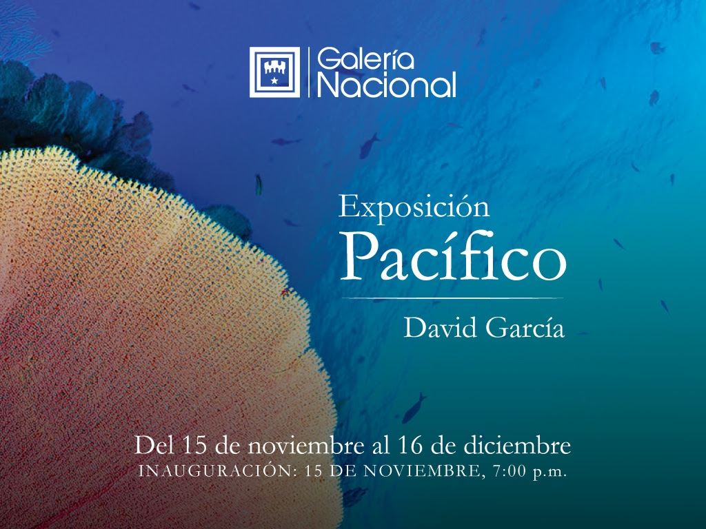 Pacífico. David García. Fotografía