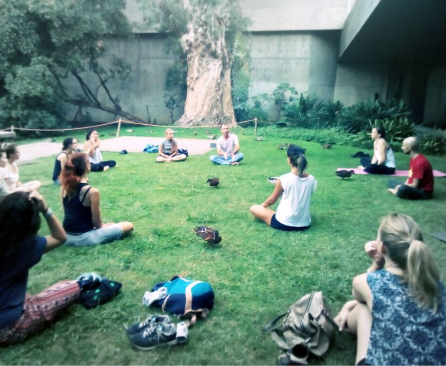 Yoga + Meditation in the Park — Free Sessions