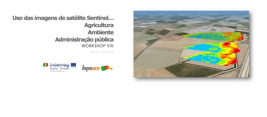 Workshop INNOACE: Uso de imágenes satelitales Sentinel: Agricultura, Medio Ambiente, Administración Pública. Évora (Portugal). 21 de octubre de 2019