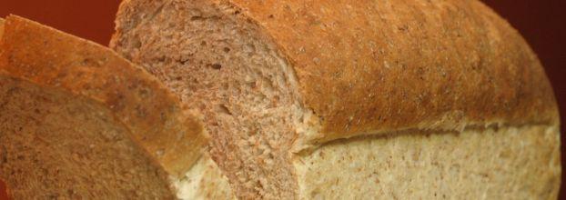 oficina de pão com farinhas biologicas - feito à mão
