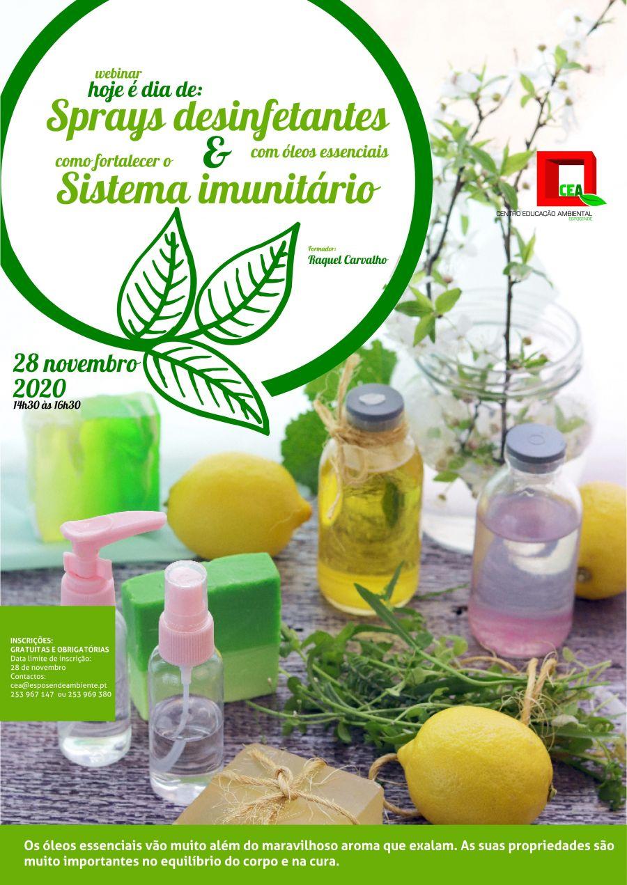 Webinar 'Hoje é dia de: Sprays desinfetantes com óleos essenciais & Como fortalecer o sistema imunitário'