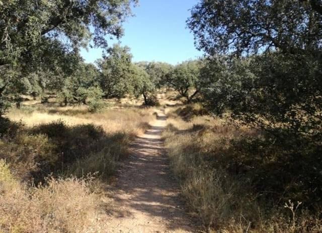 Ruta Senderismo Tres Arroyos Badajoz