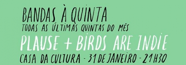 Birds are Indie + Plause