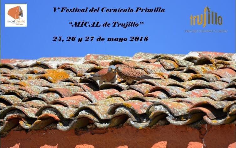 V festival del Cernícalo Primilla