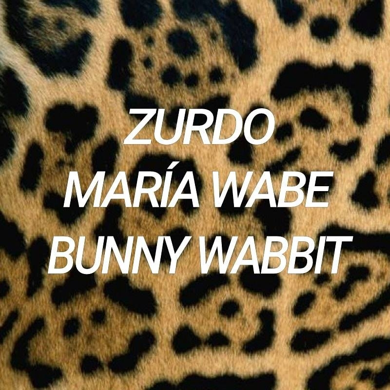 Haus jaguar party. Zurdo, María Wabe & Bunny Wabbit. Electro Dj set