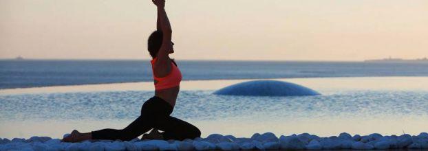 Aula de Vinyasa Yoga - Gratuito