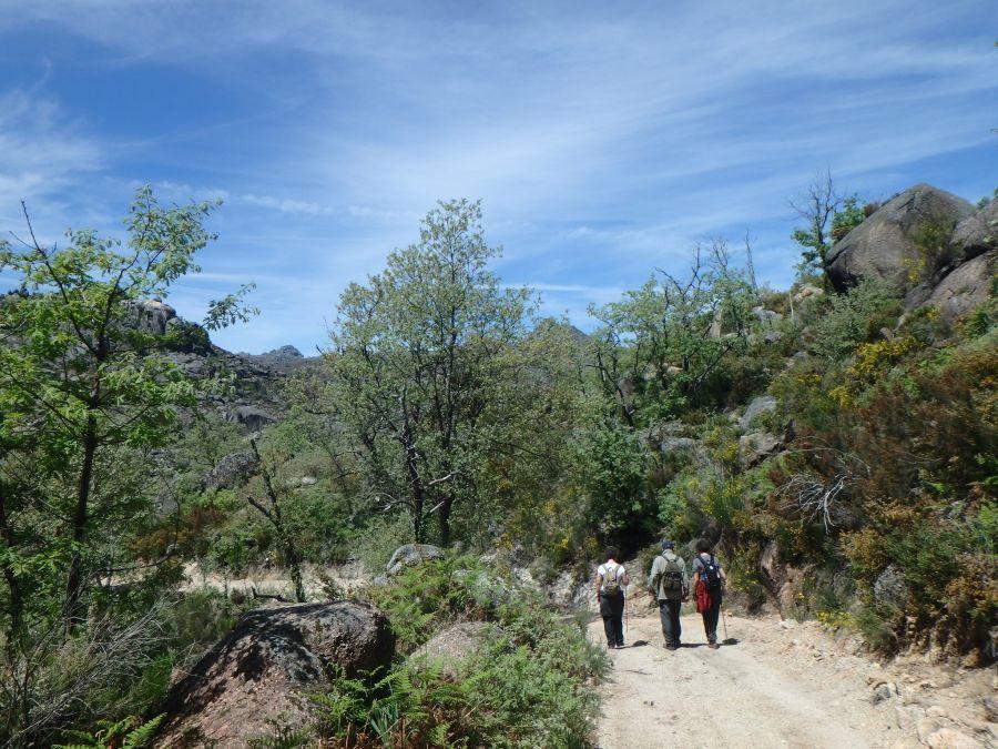 Trilho da Portela da Fairra (Montalegre)