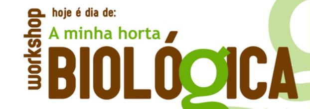 WORKSHOP HOJE É DIA DE: A MINHA HORTA BIOLÓGICA