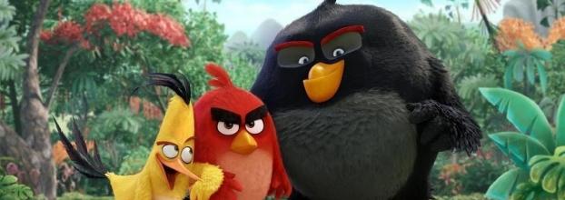 Ciclo Cine al Aire Libre: 'ANGRY BIRDS, LA PELÍCULA'