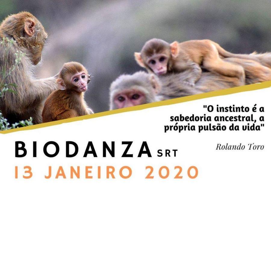 Biodanza em Palmela