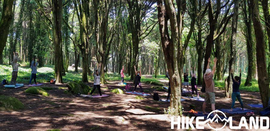 Caminhada e Yoga no Bosque do Silêncio | Sintra