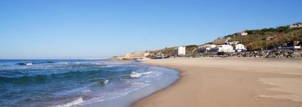 Limpeza da Praia Grande do Rodízio