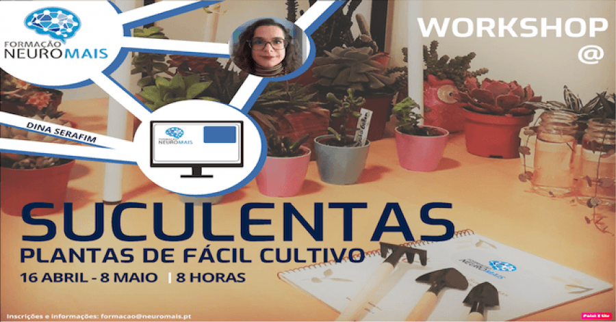 Workshop Suculentas - Plantas de Fácil Cultivo