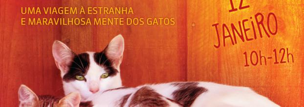 A Psicologia dos Gatos (nível 1)