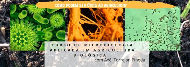 Como usar os microorganismos na agricultura sustentável