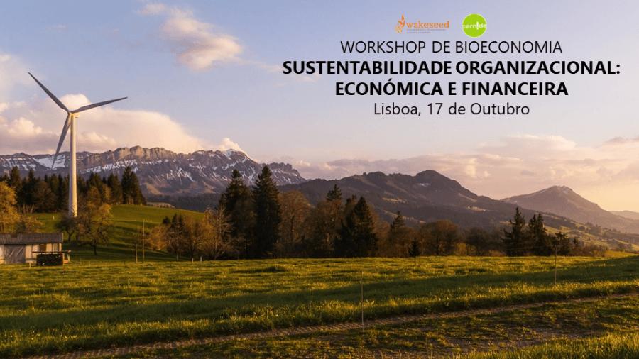 Workshop Sustentabilidade Organizacional: Económica e Financeira