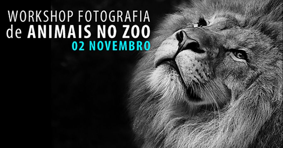 WORKSHOP FOTOGRAFIA DE ANIMAIS NO ZOO