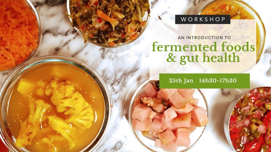 Introduction to Fermented Food & Gut Health