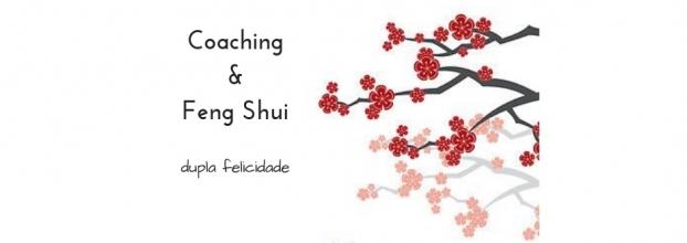 Coaching e Feng Shui, dupla felicidade - Aveiro (nivel 1)