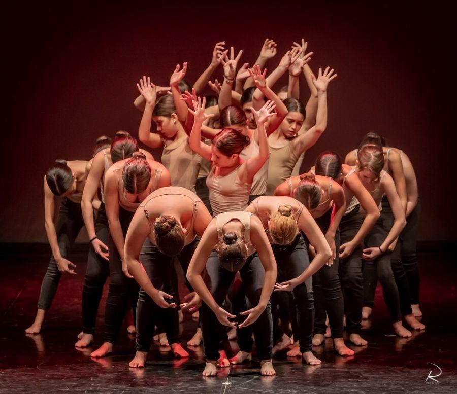 Audições AAEA   Ensino Articulado de Dança   Abertas as Candidaturas