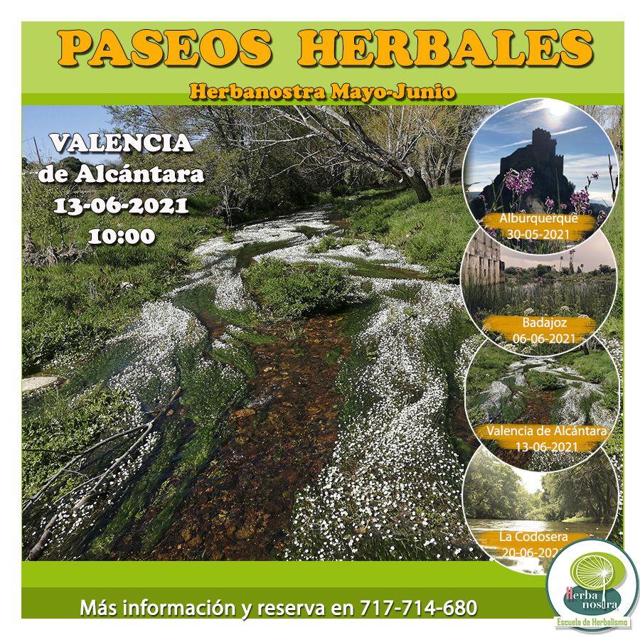 Paseo herbal por Valencia de Alcántara