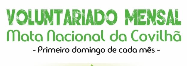 Dia do Voluntariado Mensal dos Guardiões da Serra da Estrela na Mata Nacional da Covilhã