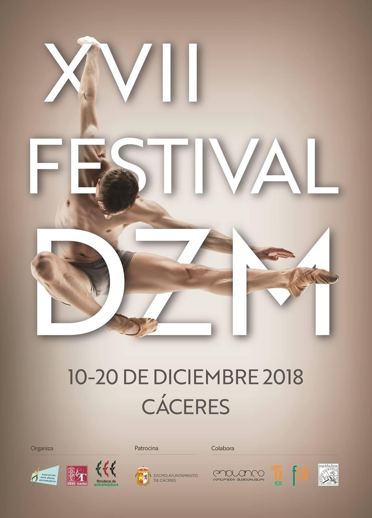 XVII Festival DZM