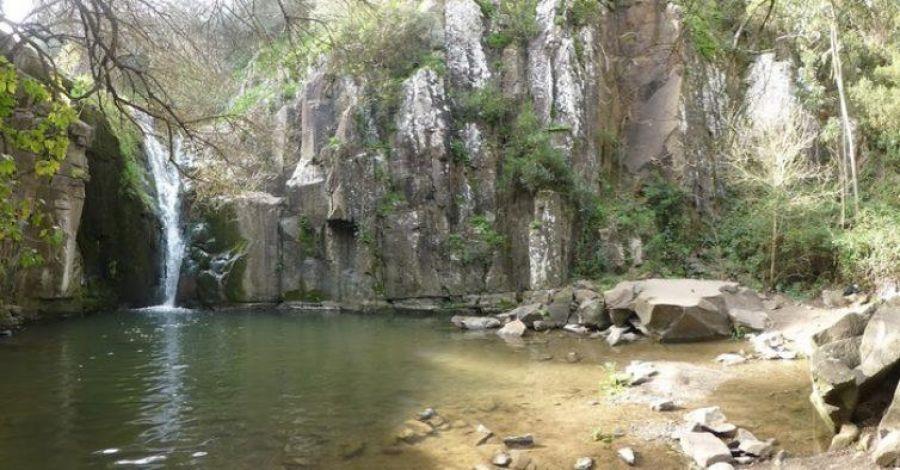 4ª Limpeza do Rio Mourão