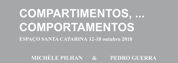 Compartimentos, ... Comportamentos, Exposição de Pintura de Michèle Pilhan e Pedro Guerra