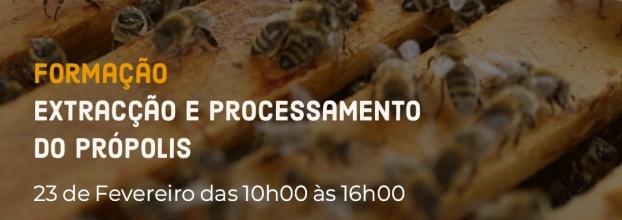 Formação Extração e Processamento do Própolis - com Sandra Barbosa