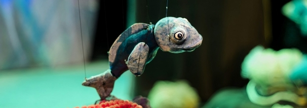 Teatro de Marionetas - O Cardume