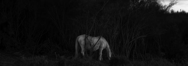 Exposição de Fotografia SEDIMENTO de Maria Oliveira